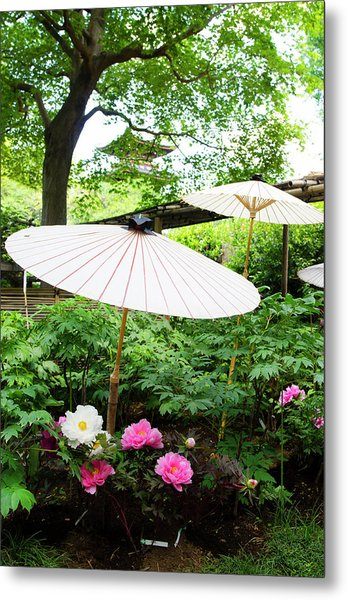 Japanese Garden With Pione Metal Print