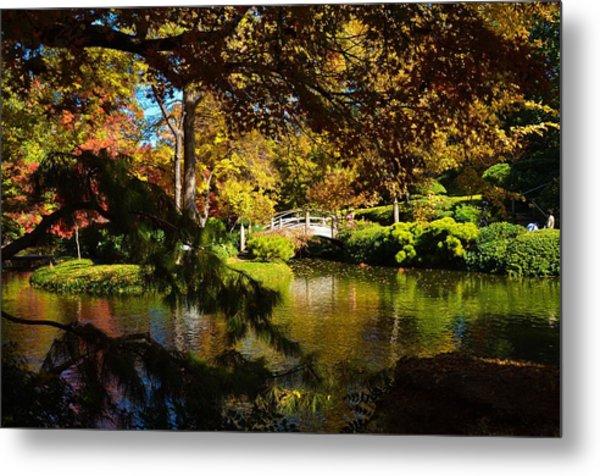 Metal Print featuring the photograph Japanese Gardens 9561 by Ricardo J Ruiz de Porras