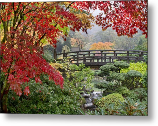 Japanese Maple Trees By The Bridge In Fall Metal Print