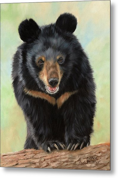Jasper Moon Bear - In Support Of Animals Asia Metal Print