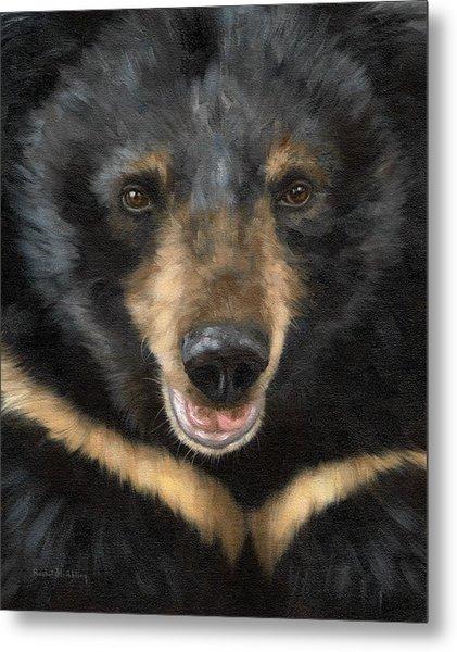 Jasper Moon Bear - In Support Of Animals Asia Metal Print