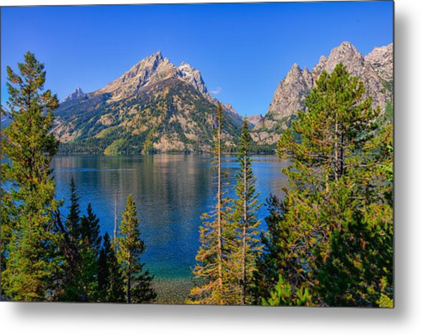 Jenny Lake Overlook Metal Print