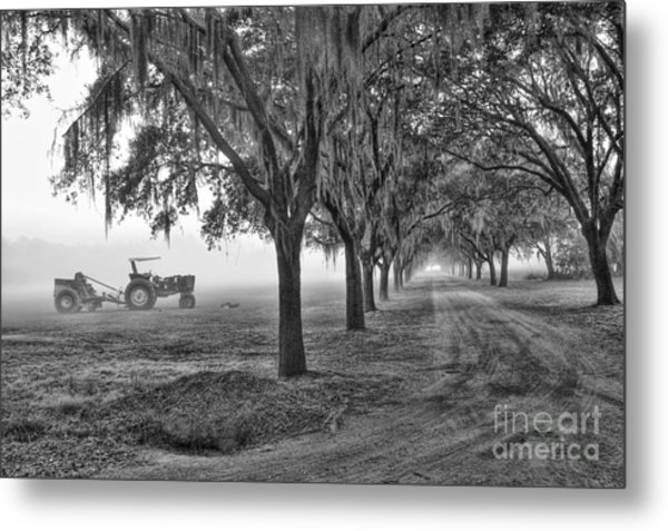 John Deer Tractor And The Avenue Of Oaks Metal Print