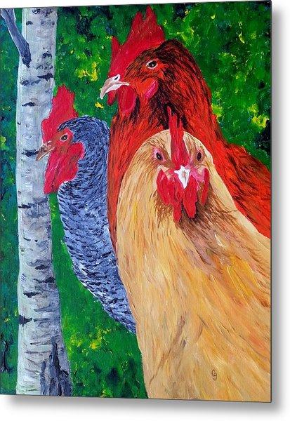 John's Chickens Metal Print