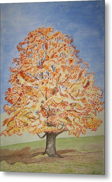 Jolanda's Maple Tree Metal Print