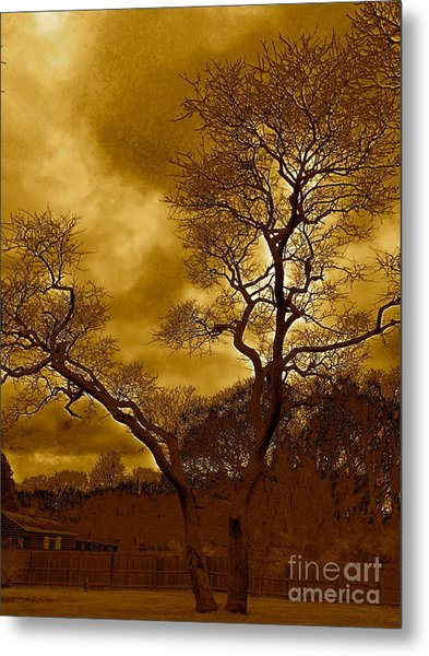 Joshua Tree Metal Print by Q's House of Art ArtandFinePhotography