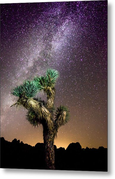 Joshua Tree Vs The Milky Way Metal Print
