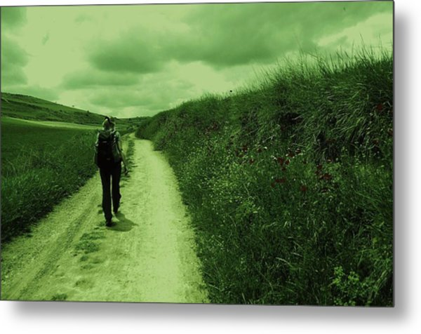 Journey Of Life Metal Print