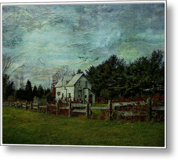 Joyful Country Life  Metal Print by Dianne  Lacourciere