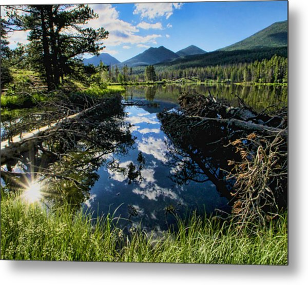 July Morning Metal Print