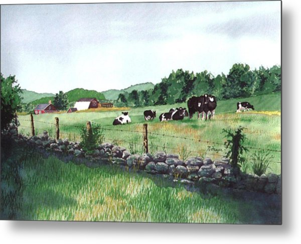 July Morning Eastern Connecticut Metal Print