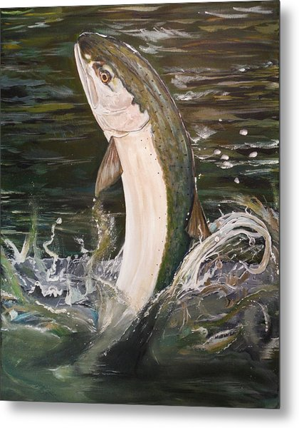 Jumping Steelhead Metal Print