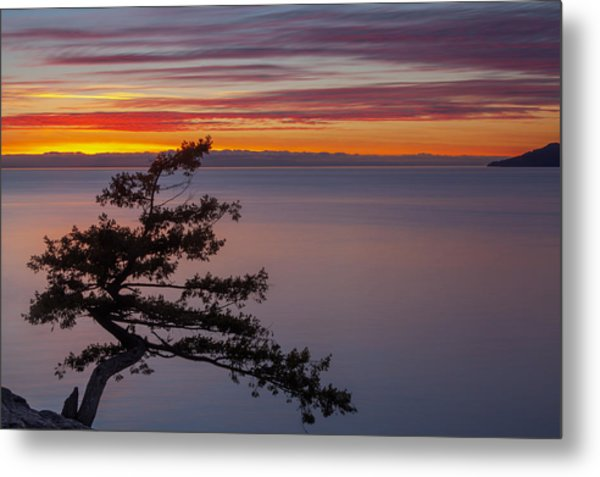 Juniper Point Metal Print