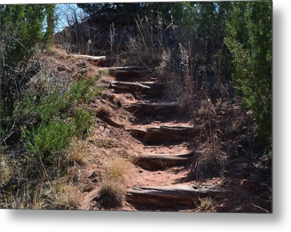 Juniper Ridge Steps Metal Print