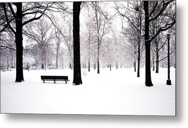 Jupiter Park In Snow Metal Print