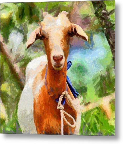 Just A Goat Metal Print
