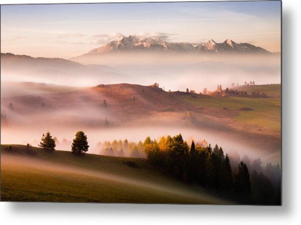 Just A Silence Metal Print by