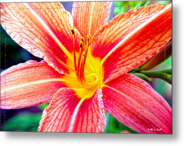 Just Another Day Lilly Metal Print