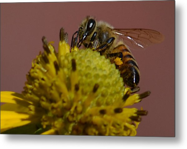Just Bee Metal Print