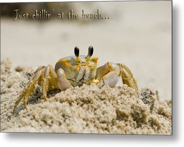 Just Chillin On The Beach Metal Print by Jeff Abrahamson