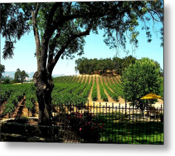 Justin Vineyards Paso Robles California Wine Country Winery Metal Print by Ron Bartels