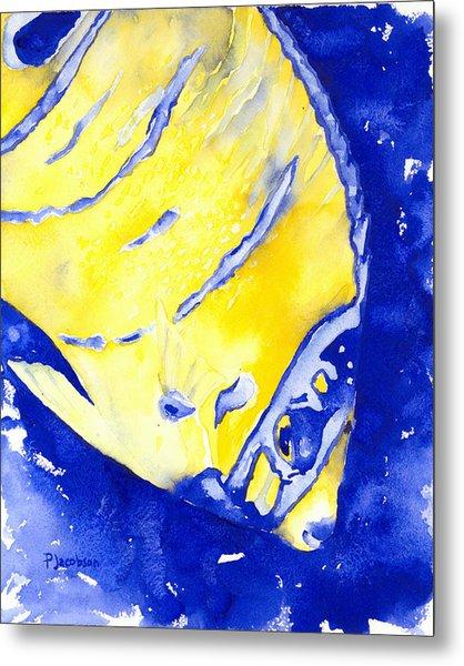 Juvenile Queen Angelfish Metal Print