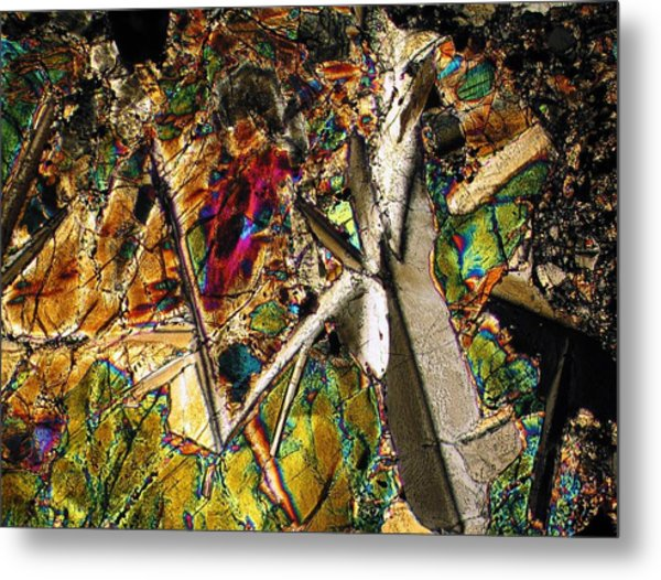 Jungle Dusk Metal Print