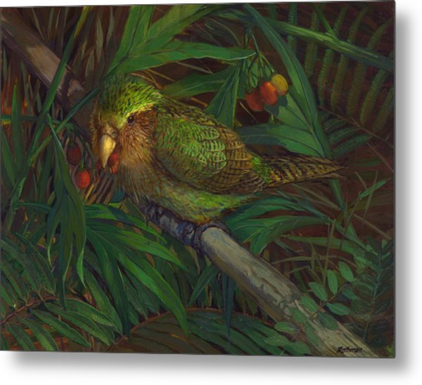 Kakapo Nighttime Feeding Metal Print by ACE Coinage painting by Michael Rothman
