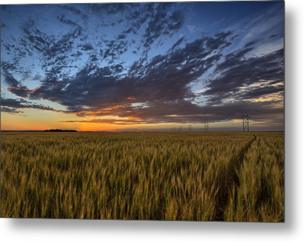 Kansas Color Metal Print