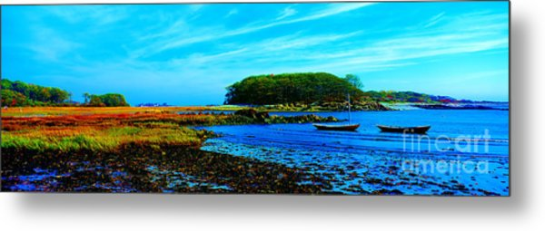 Kennebunkport  Vaughn Island  Metal Print