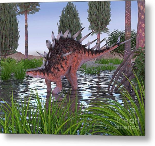 Kentrosaurus Metal Print