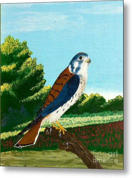 Kestrel And Flowers Metal Print