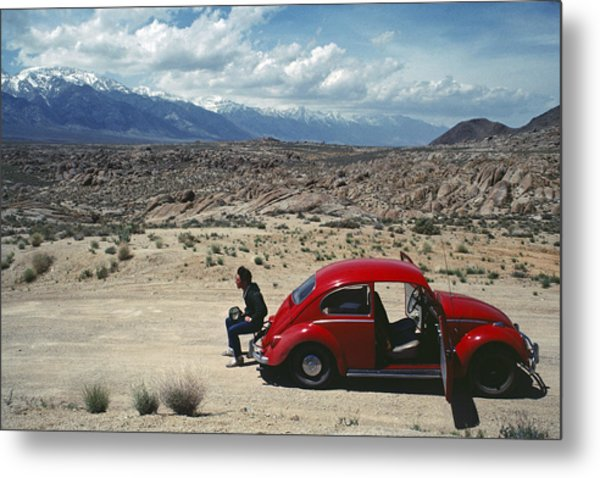 Metal Print featuring the photograph Kevin And The Red Bug by David Bailey
