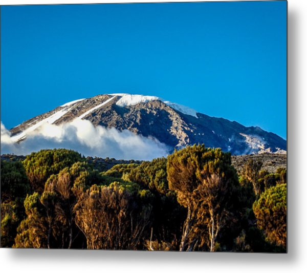 Kilimanjaro Metal Print