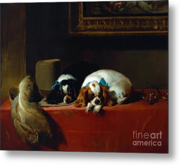 King Charles Spaniels Metal Print by Pg Reproductions
