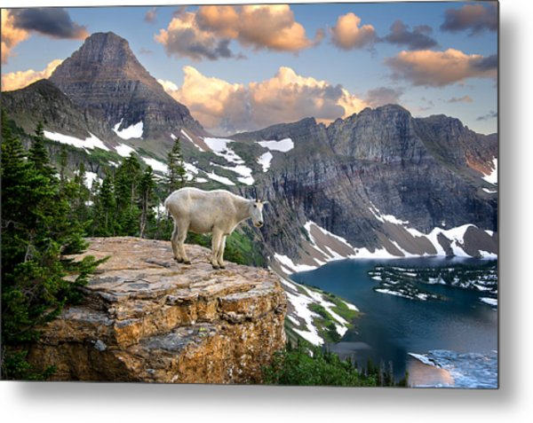 King Of The Mountains Metal Print