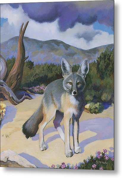 Kit Fox Metal Print