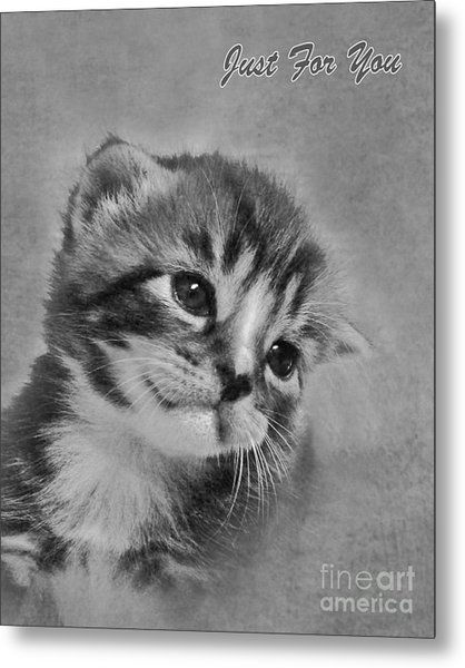 Kitten Just For You Metal Print