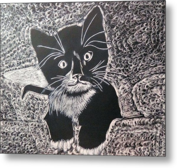 Kitty In Blanket Metal Print