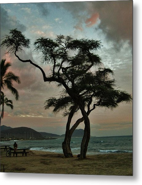 Knurled Tree And Resting Rider Metal Print