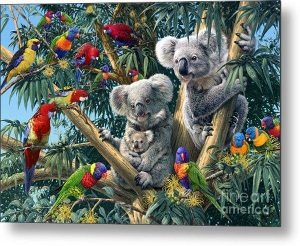 Koala Outback Metal Print
