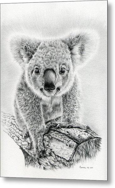Koala Oxley Twinkles Metal Print