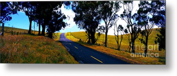 Kohala Mountain Road  Big Island Hawaii  Metal Print