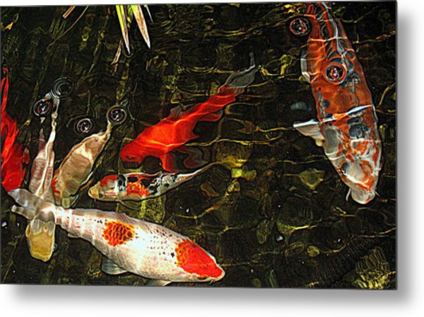 Koi Joy Metal Print