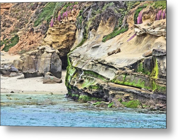 La Jolla Cliffs Metal Print