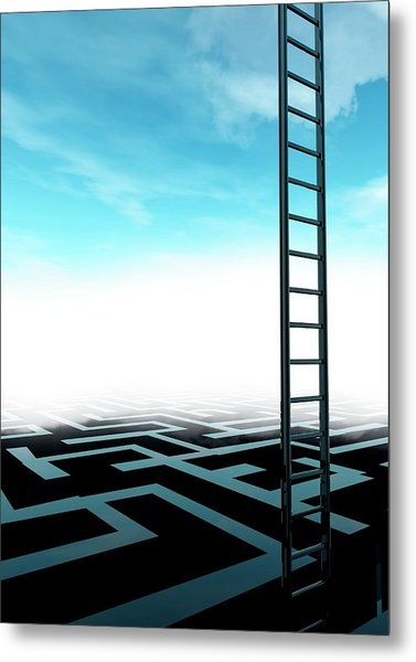 Ladder And Maze Metal Print by Victor Habbick Visions/science Photo Library