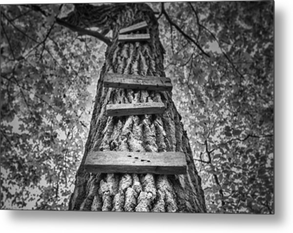 Ladder To The Treehouse Metal Print
