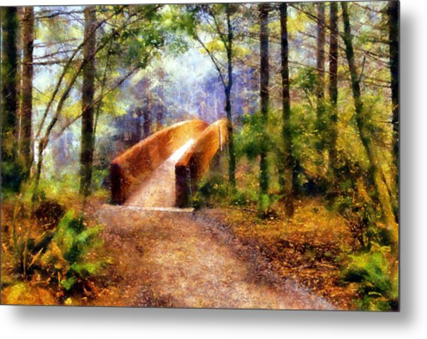 Lady Bird Johnson Grove Bridge Metal Print