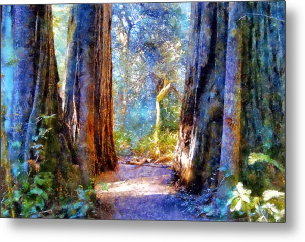 Lady Bird Johnson Grove Metal Print