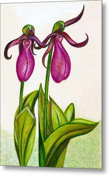 Lady's Slipper Metal Print